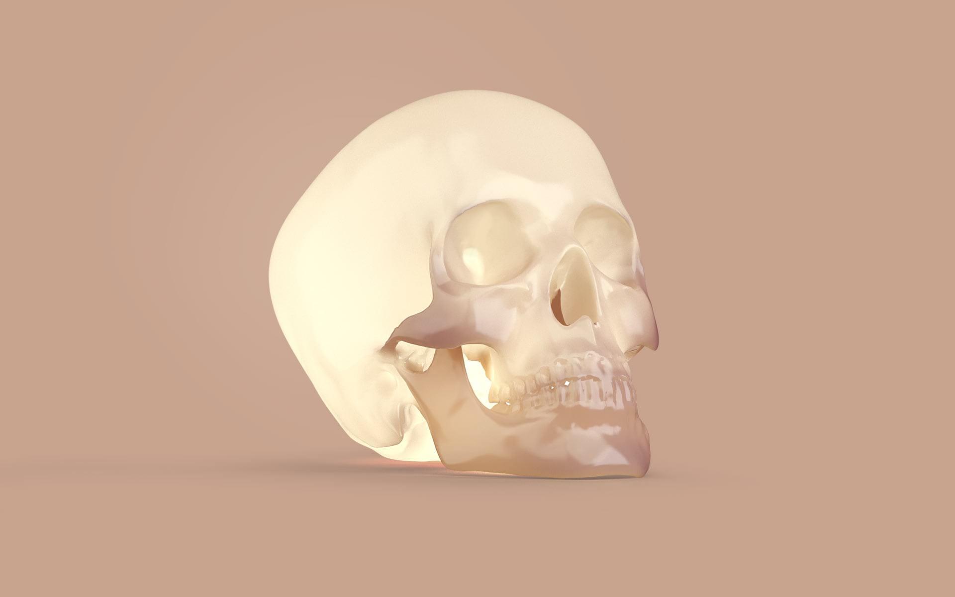 Skull 3D Modelling