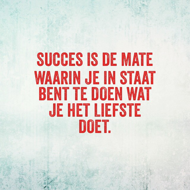 Hoe succesvol ben jij?